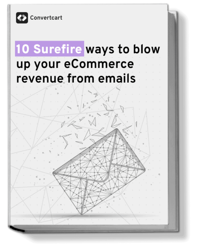 eCommerce Revenue Book